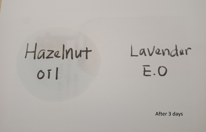 Hazelnut vs Lavender_after 3days